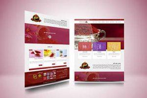 نمونه کار طراحی سایت فروشگاه اینترنتی زعفران آلنج